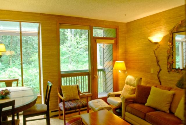Mt. Baker Lodging Condo #84 – SAUNA, FIREPLACE, DISHWASHER, W/D, SLEEPS-6! photo 60815