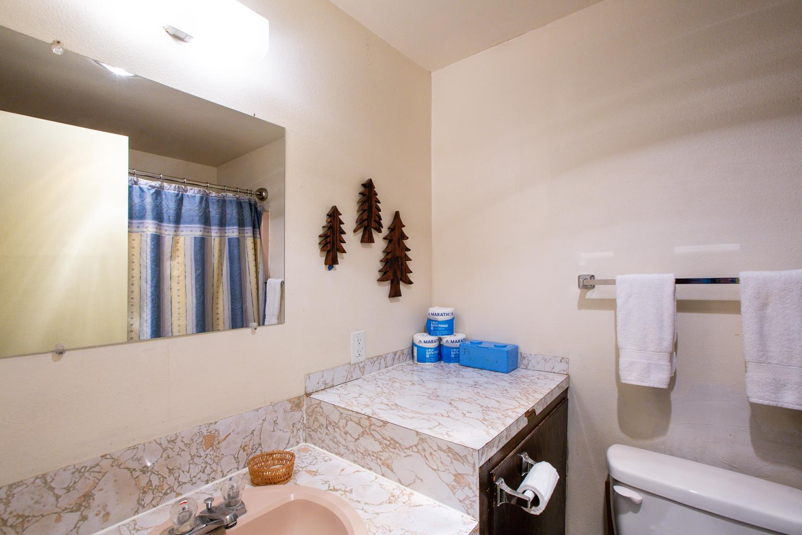 Apartment Mt  Baker Lodging Condo  77     ECONOMICAL  CONVENIENT  KITCHENETTE  SLEEPS-2  photo 31816864