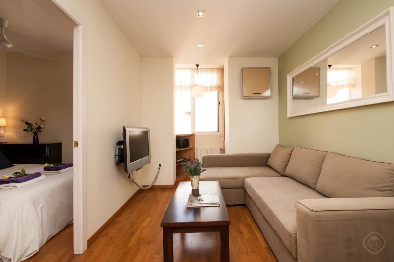 Gracia Garden apartment Barcelona photo 31816041