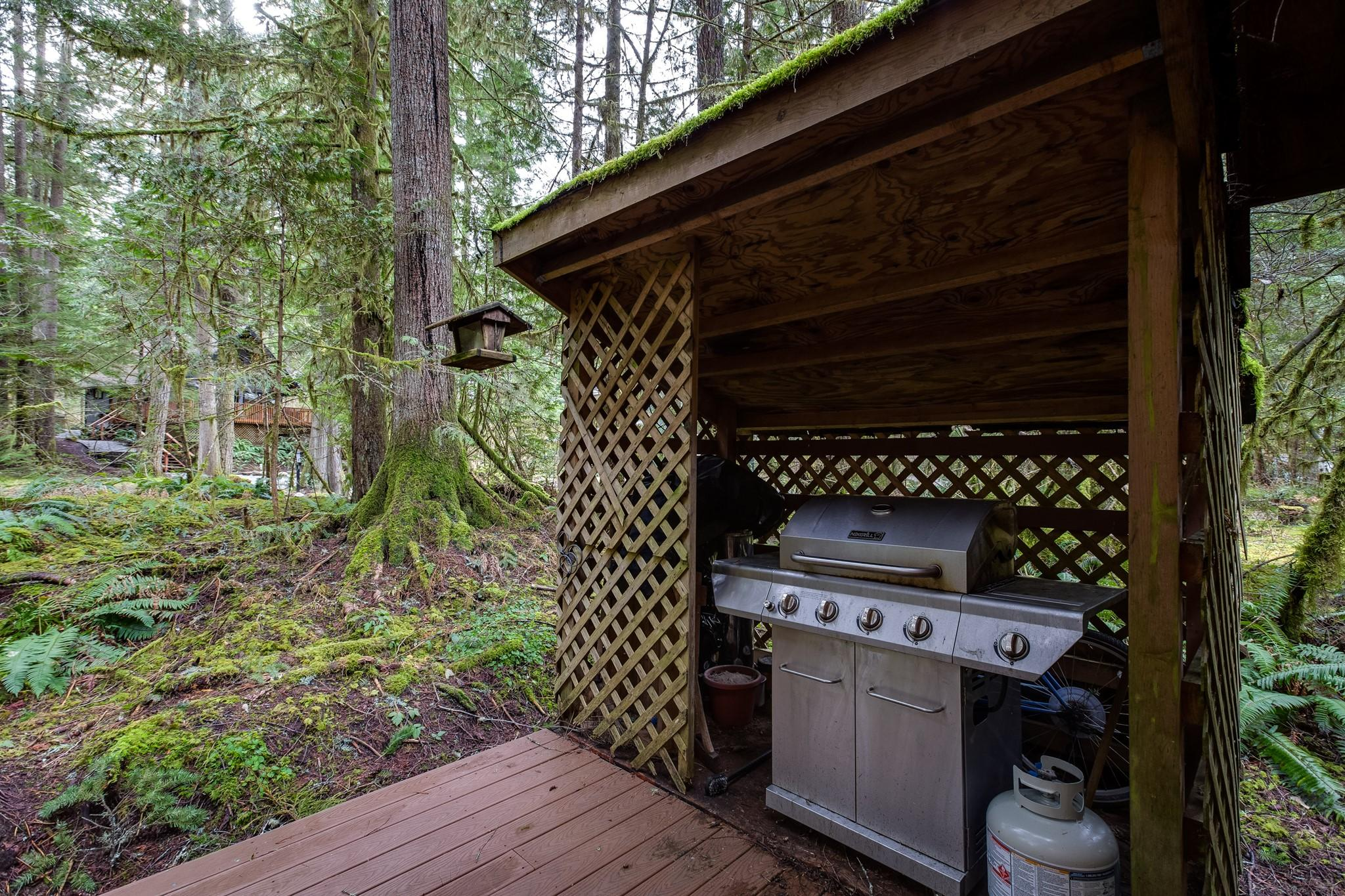 Apartment Mt  Baker Lodging Cabin 40  ndash  HOT TUB  BBQ  PET FRIENDLY  WIFI  SLEEPS 8  photo 30889381