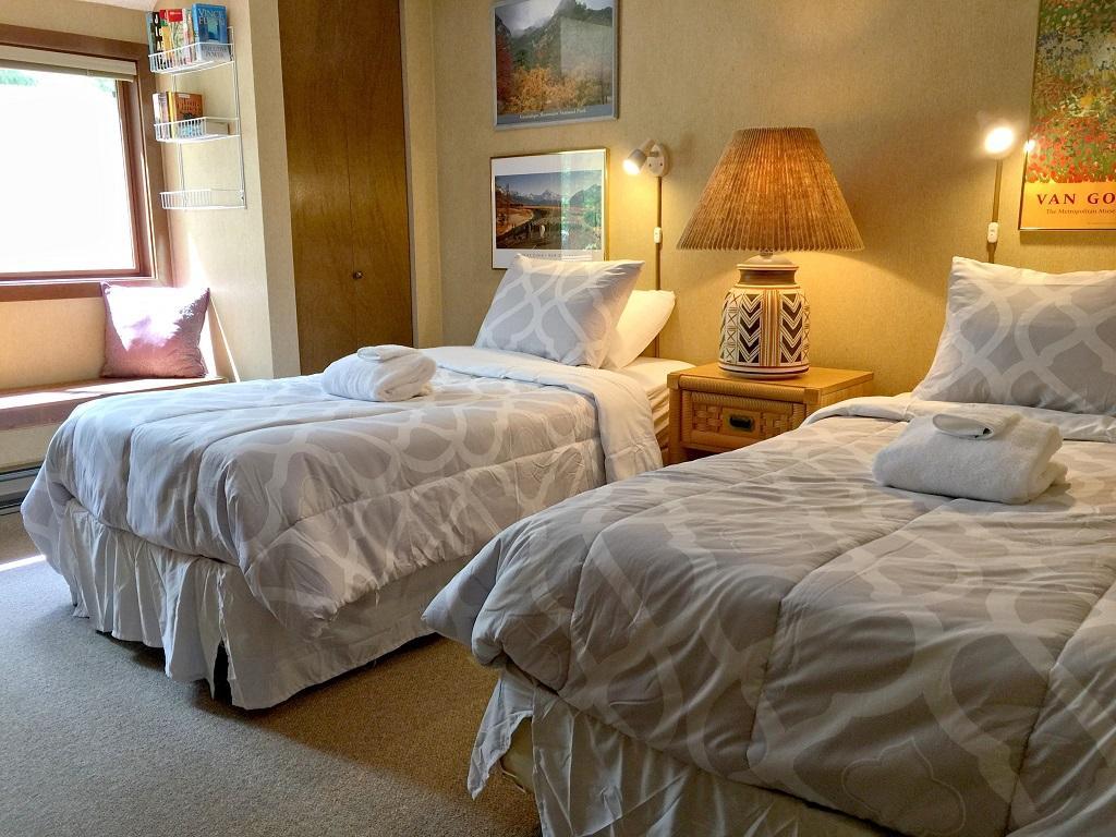 Apartment Mt  Baker Lodging Condo  59     FIREPLACE  DISHWASHER  WASHER DRYER  SLEEPS-6  photo 4000465