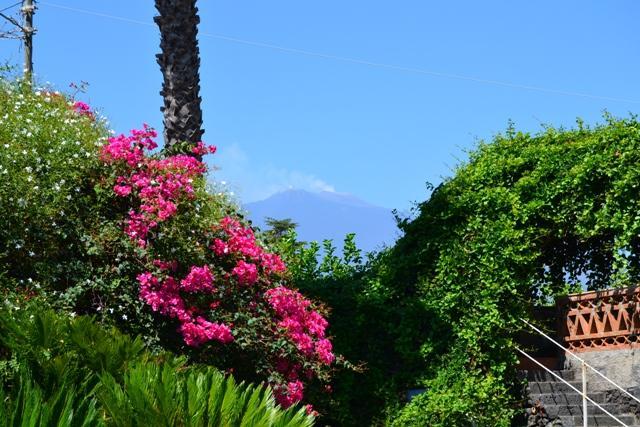 Apartment Villa with garden in Sicily near the sea   photo 31811562