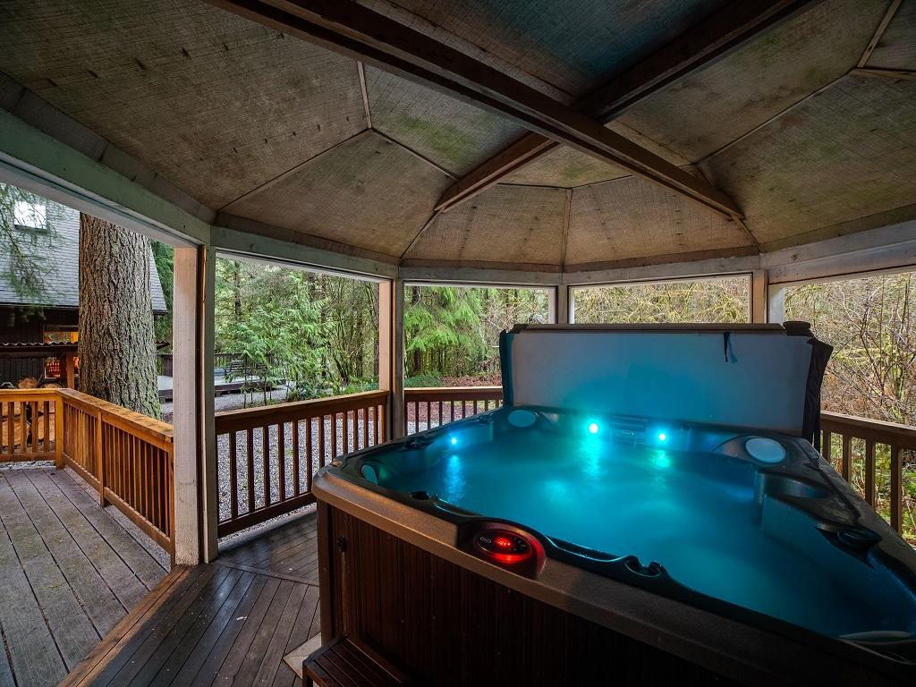 Apartment Mt  Baker Lodging Cabin  66     HOT TUB  WOOD STOVE  BBQ  WIFI  SLEEPS-10  photo 4001917