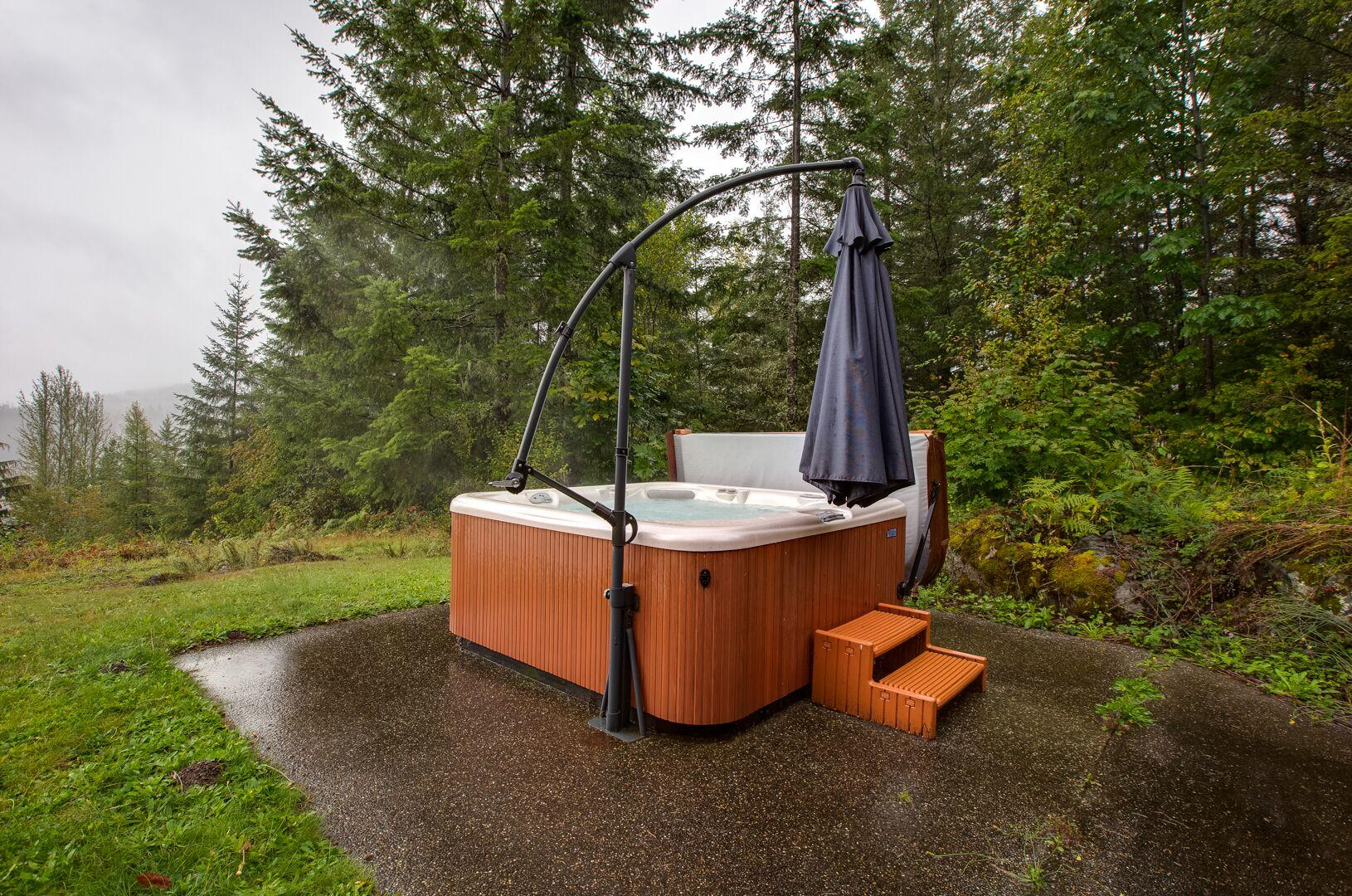 Apartment Mt  Baker Lodging Ensuite  15  ndash  MT VIEWS  HOT TUB  PETS OK  SLEEPS 6  photo 21433669