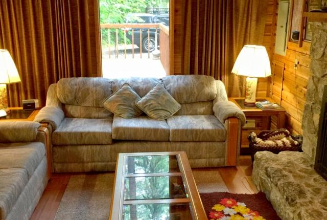 Mt. Baker Lodging Cabin #35 – A/C, PETS OK, DISHWASHER, FIREPLACE, SLEEPS-6! photo 59973